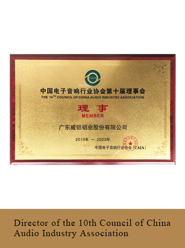 Director of the 10th Council of China Audio Industry Association